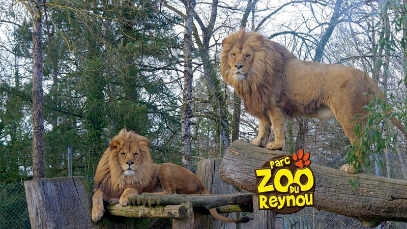 The Reynou ZOO Park
