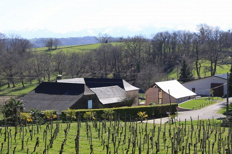 Domaine Capdevielle
