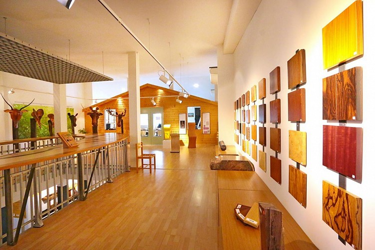 Wood and Marquetry Museum