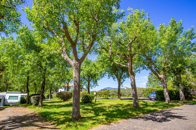 Camping Alturan
