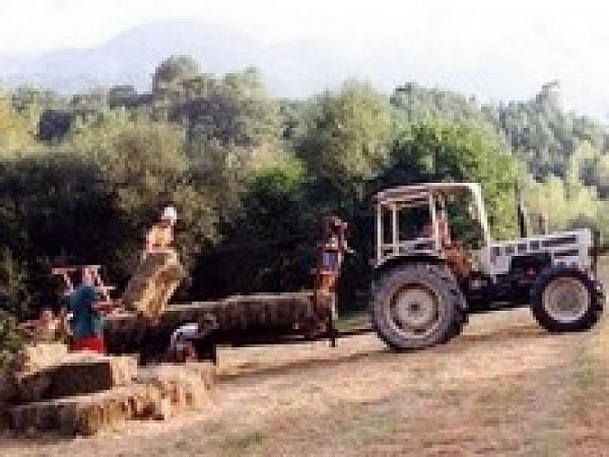 Camping à la ferme Sobieta