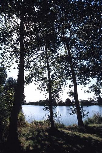 L'étang du Guébriand