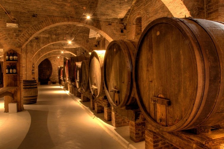 Discover the Region of Champagne – Hotel pick-up/drop-off