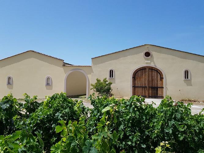Gîtes Château Canon Montségur