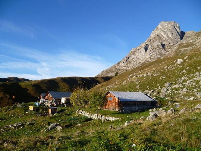 L'alpage des Frédys - vallée de Coeur