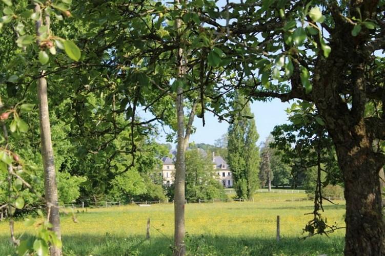 FOURDRAIN - Meublé - Le domaine de mon enfance - Le Presbytère08