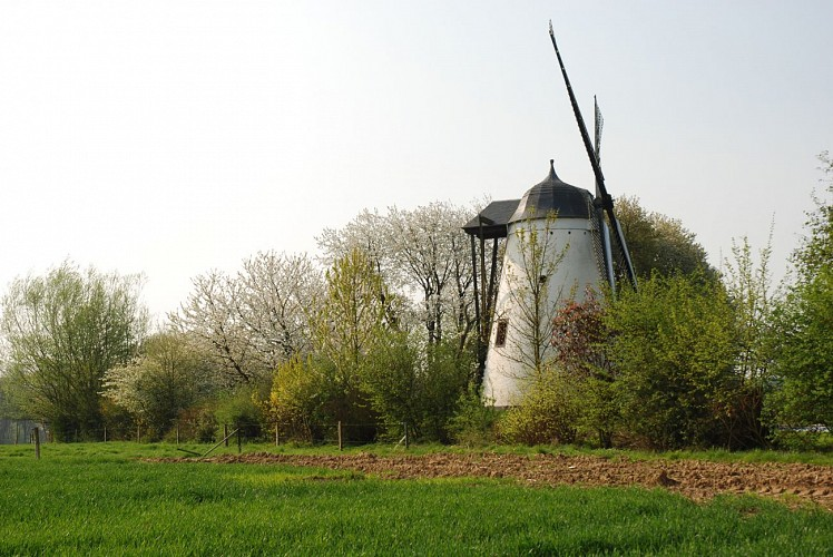 Le moulin du Tiège