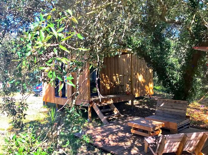 Mon bungalow sous les arbres 5