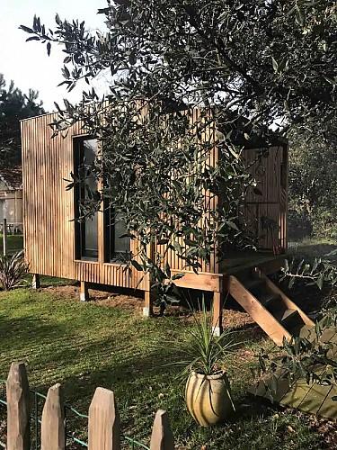 Mon bungalow sous les arbres 3