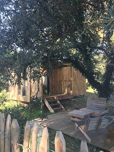 Mon bungalow sous les arbres 10