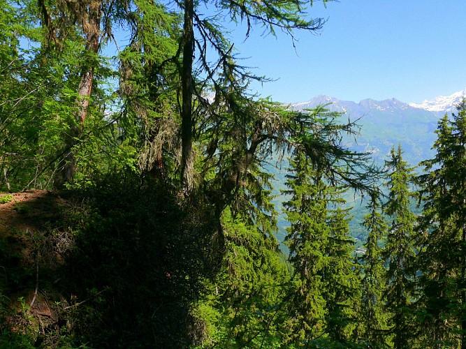 Croix Bozon - lac de l'étroit. (Boucle.)