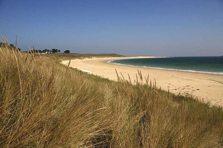 Les dunes et les plages