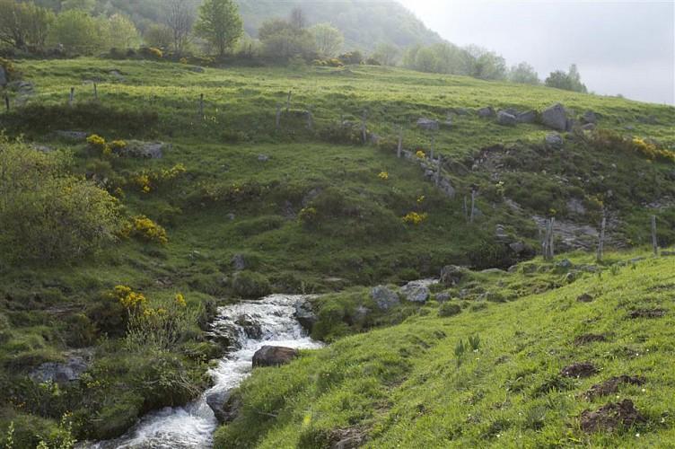 Plomb du Cantal et Col de Prat de Bouc