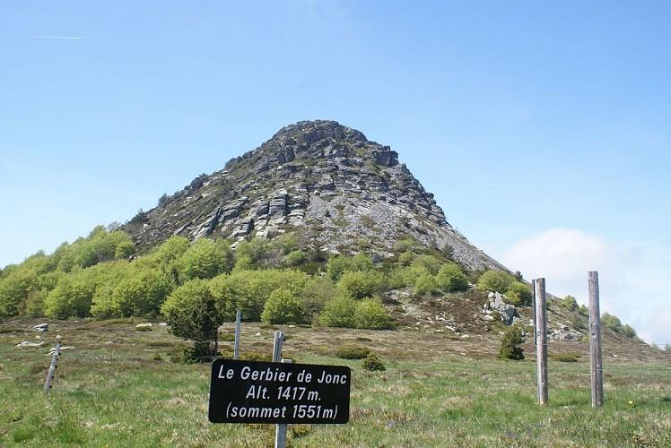 Départ pied du Mont Gerbier de Jonc