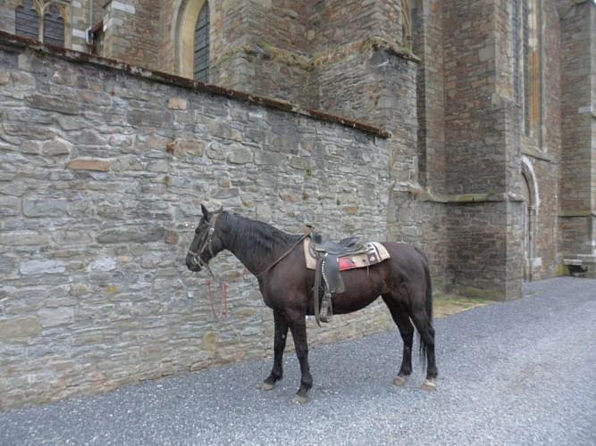 Anneaux d'attache pour les chevaux Val-Dieu