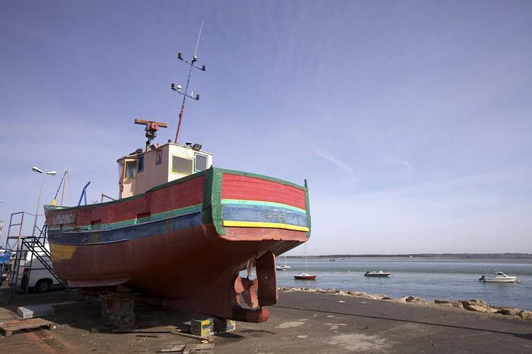 Les ports de plaisance et de pêche