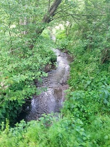 Ruisseau où vous pourrez faire boire vos chevaux