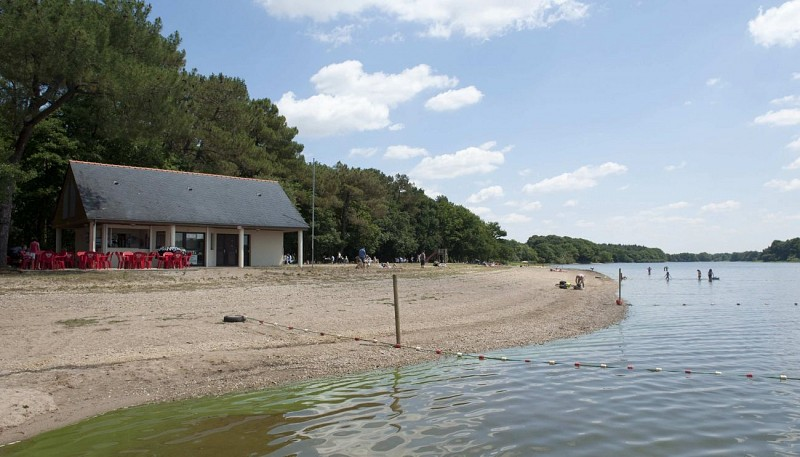 Plage de la Forêt - Lac de Vioreau
