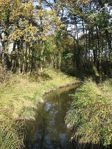 Pont de Pierre sur le petit canal