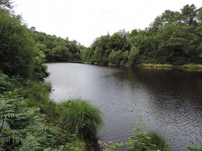 L'étang du Ty Mat