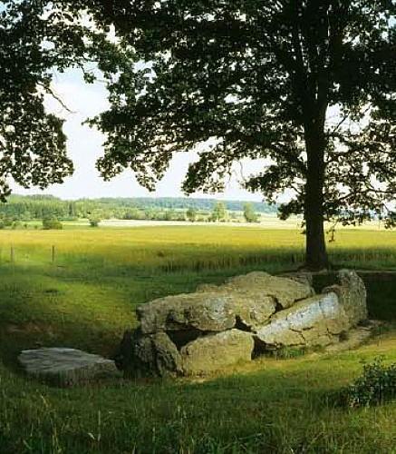 The megalithic field