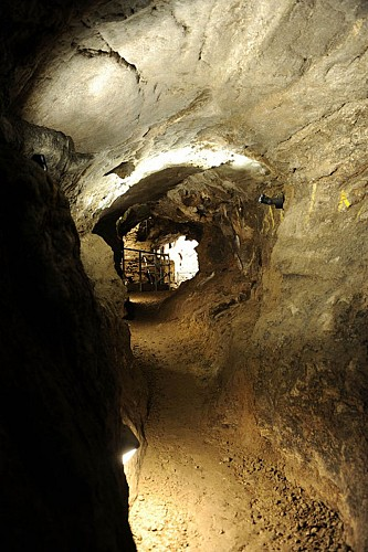 La grotte Scladina