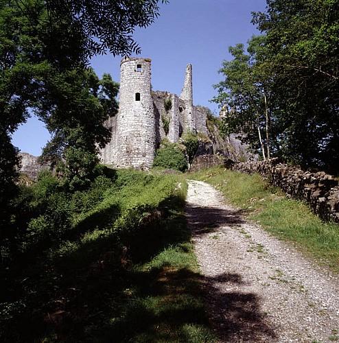 Le château de Montaigle