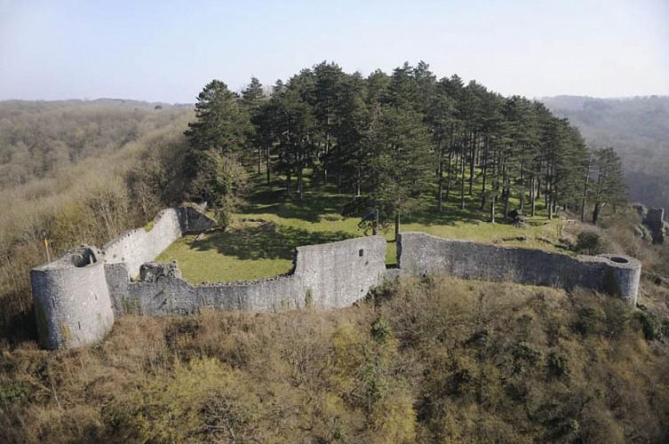 Les ruines du château de Poilvache
