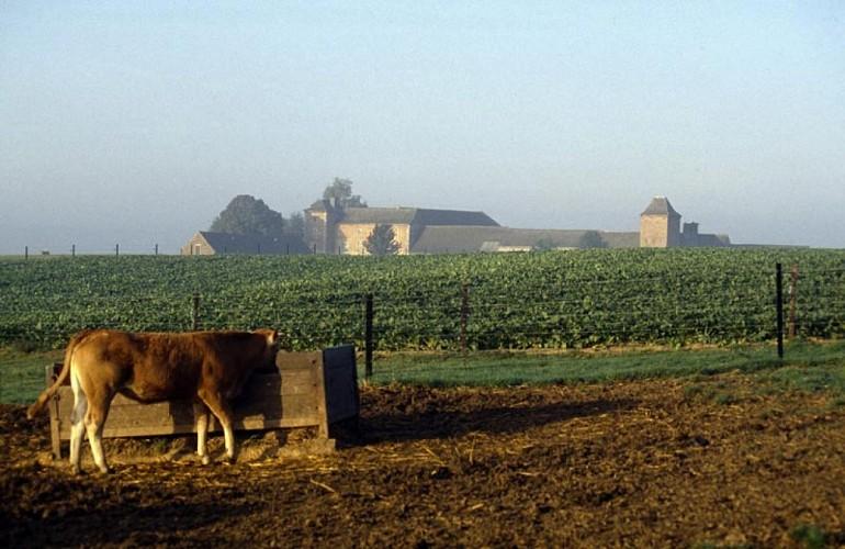 Le site et les bâtiments agricoles du plateau de Berlacomine