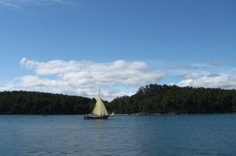 Arquipélago de Cortegada