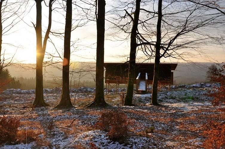 Forêt de Saint-Hubert et massif de Freyr