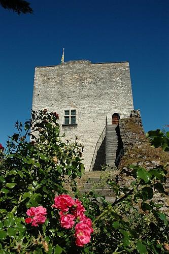 Morestel Medieval Tower