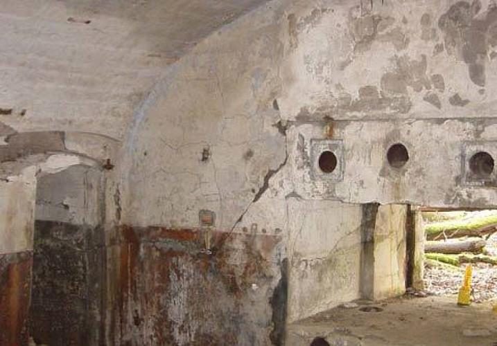 Cognelée Fort