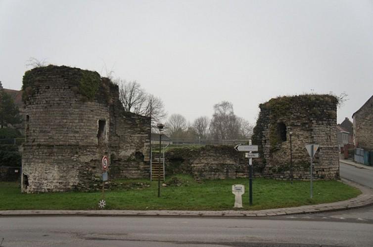 Les ruines de l'ancien château de Vaulx à Vaulx-lez-Tournai