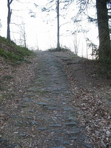 Chemin en pierre