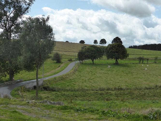 Balades à pied et à vélo dans les Ardennes secrètes