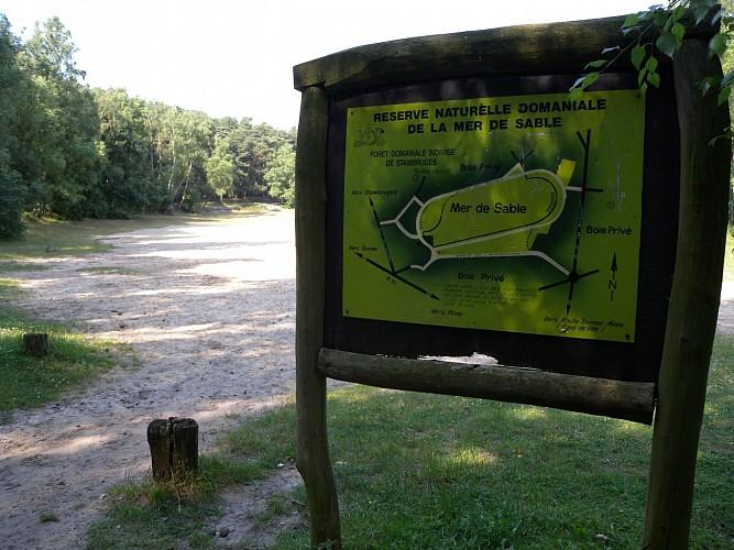 Bos van Stambruges en de Zandzee