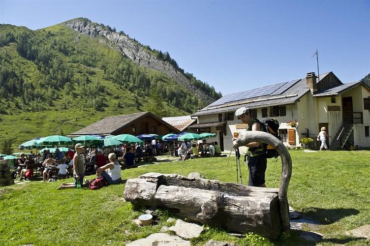 High Mountain Pasture : Le Truc