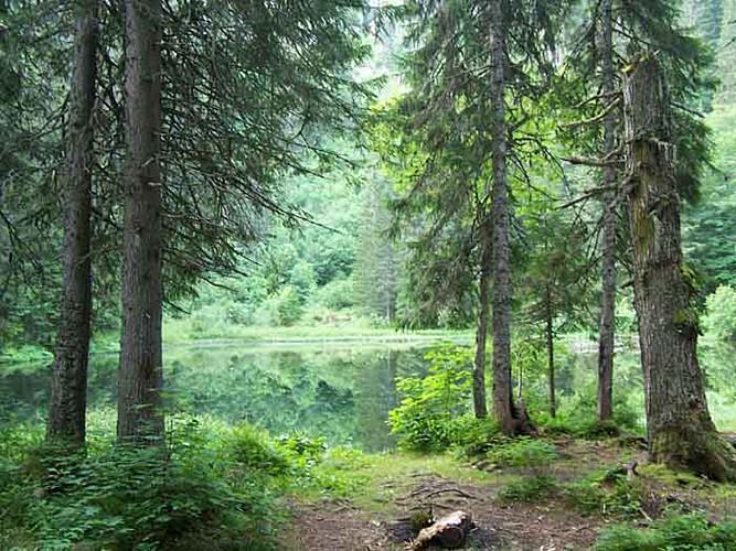 Le lac de Petétoz