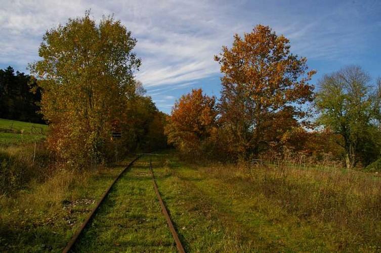 Histoire de la voie ferrée