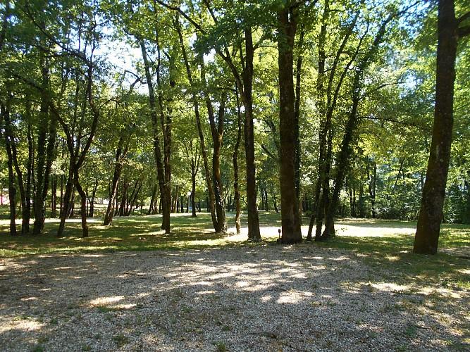 campings camping municipal de la vall e bleue montalieu vercieu. Black Bedroom Furniture Sets. Home Design Ideas