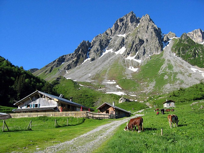 Mountain Refuge Hut: La Balme