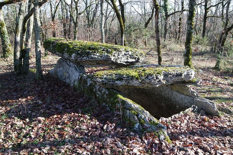 La Tombe du Géant - Dolmen (Sépulture collective de 2500 à 1700 avant J-C)