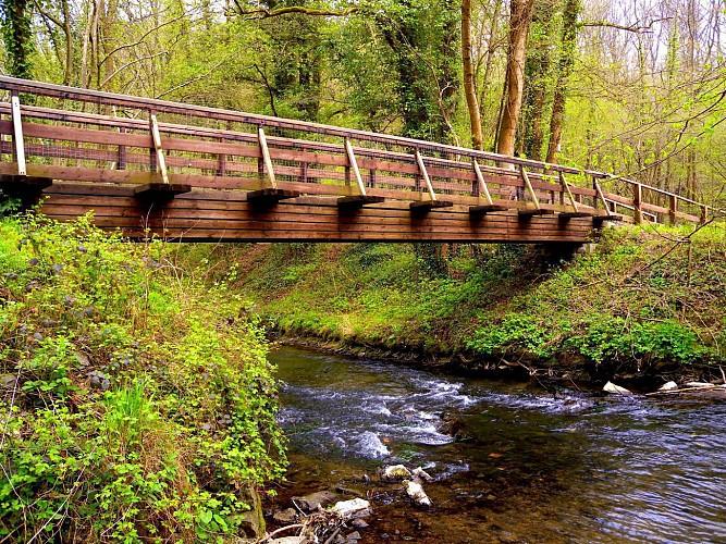 Vallée de la Honnelle - Natura 2000
