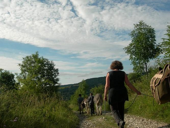 Auvergne en marche