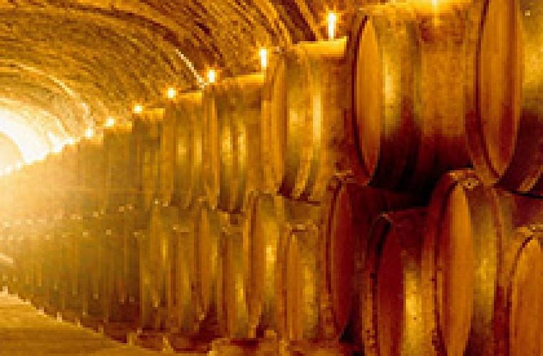 Les caves Paul Buisse
