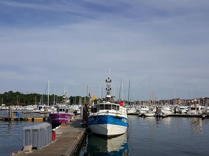 Le port de Capbreton