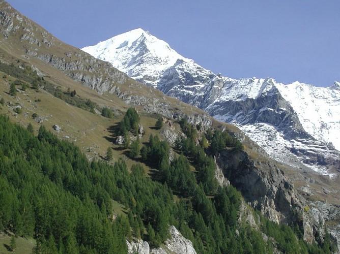 Glacier of the Mont-Pourri