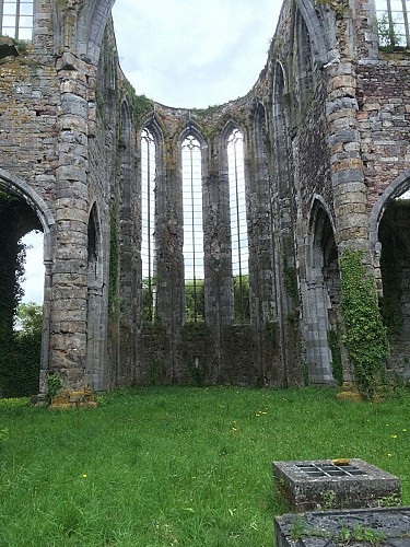 Abbaye d'Aulne et ses ruines