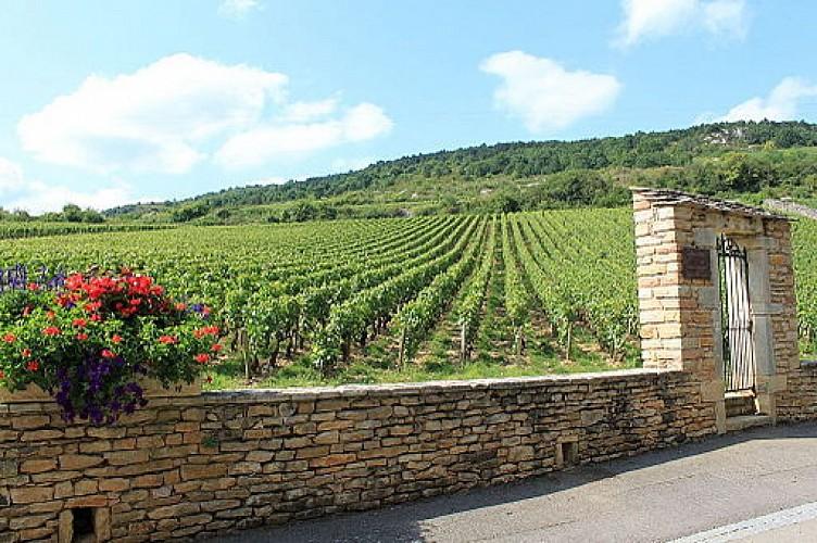 Bourgogne Randonnée